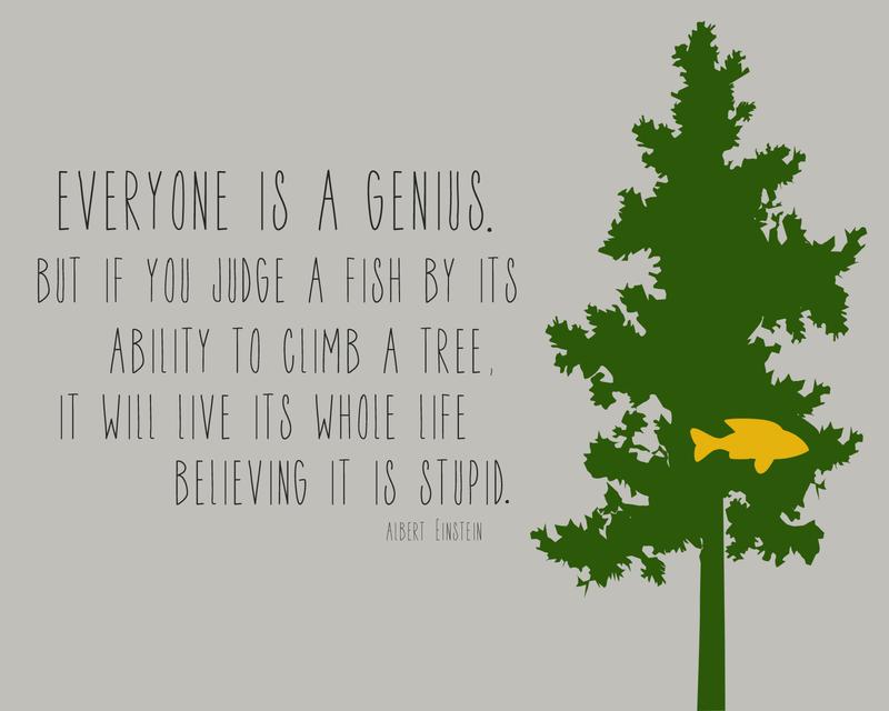 Everyone Is A Genius copy