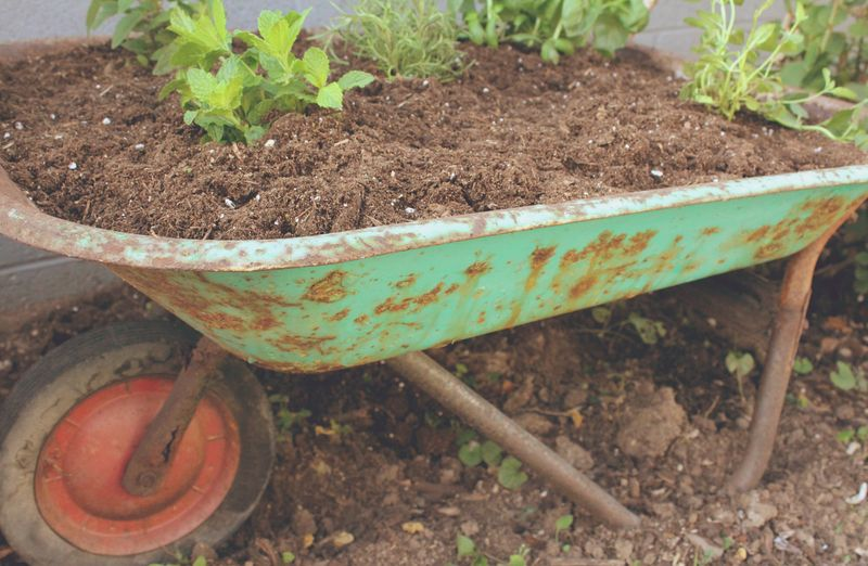 Just Make Stuff Blog...Wheelbarrow Herb Garden