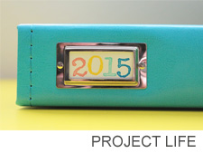 Project life 2 copy