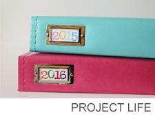 Project life 3 copy
