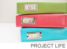 Project life copy